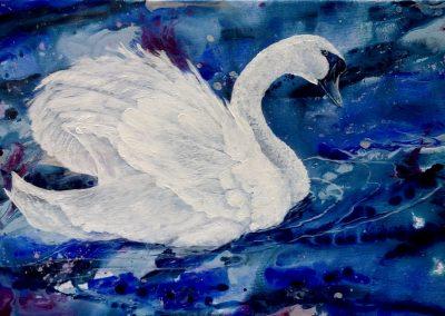 """Love Swan"" 2018 (40x60cm)"